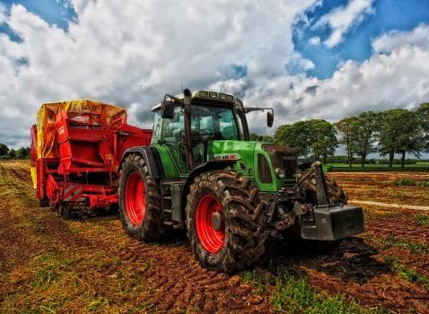 BANDO 2019 INTERVENTI A SOSTEGNO DELL'AGRICOLTURA IN AREE MONTANE